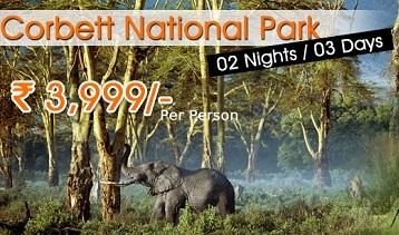 Jim Corbett National Park Packages